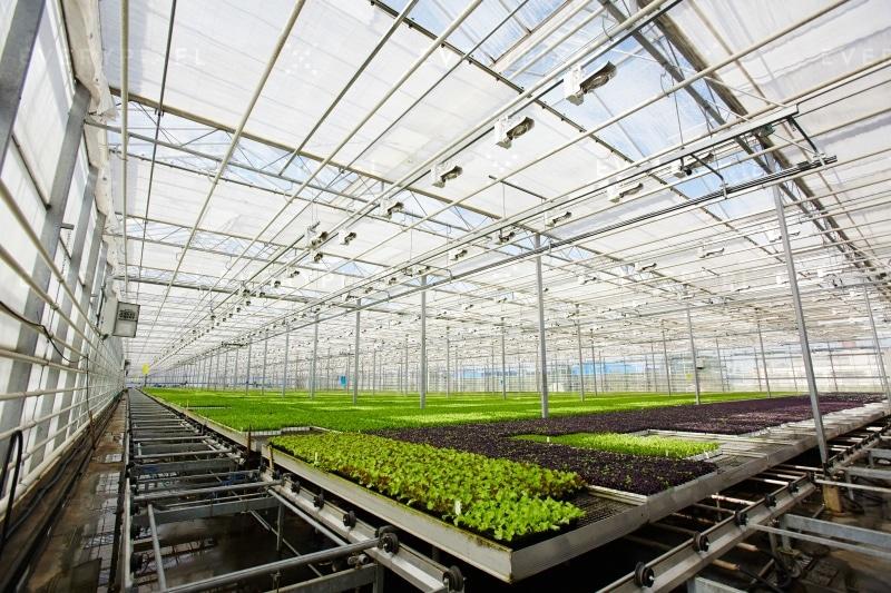 Logiciel de gestion pour les professionnels de l'horticulture
